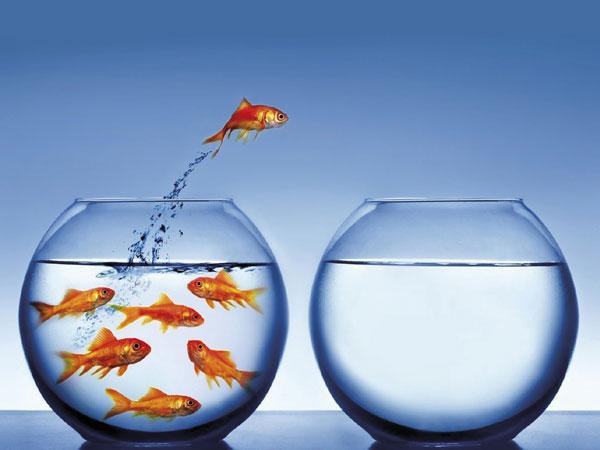 Artigo: Coloque novos desafios na sua vida e viva cada vez mais motivado